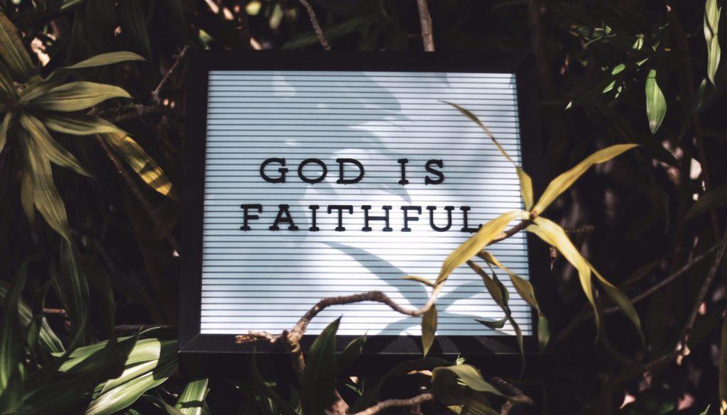 wierność
